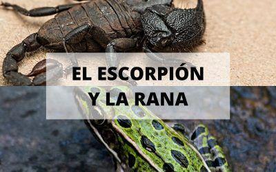 El cuento del escorpión y la rana, conoce tu verdadera naturaleza