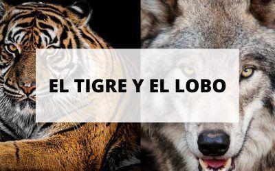 El cuento del tigre y el lobo: No te conviertas en víctima